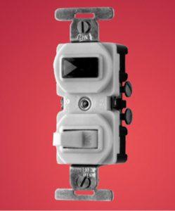 kason eagle Light Switch